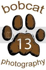 8-Bobcat13